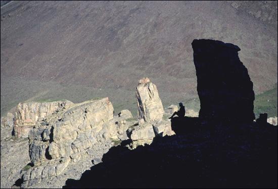 Limestone columns IV
