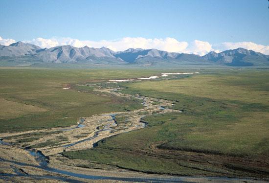 Coastal Plain and Sadlerochit Mountains